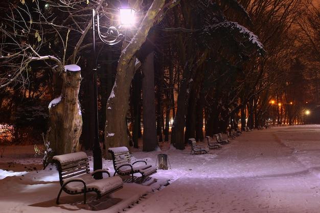 Ławki w nocy winter park