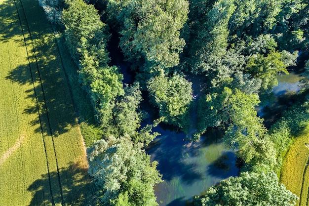 Le rhin tortu, mała rzeka na południu strasburga - grand est, francja