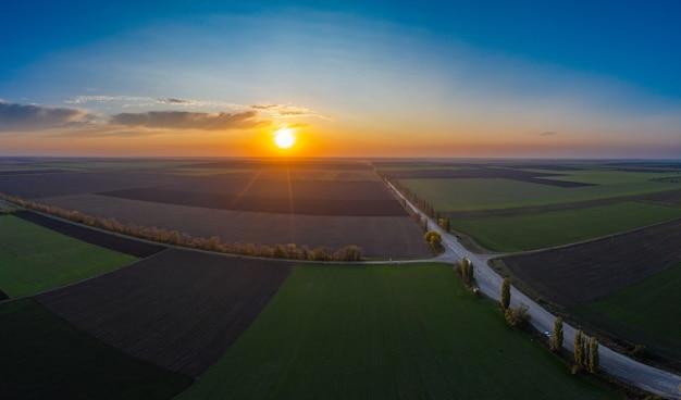 Lecąc nad polem uprawy pszenicy