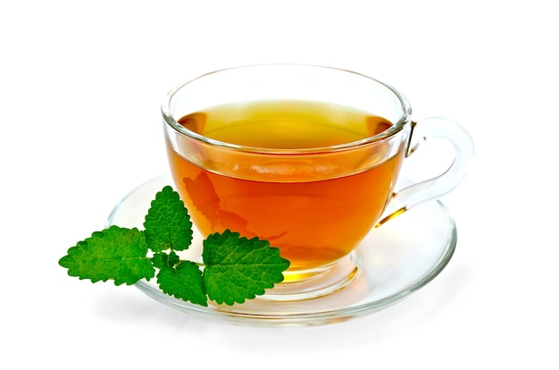 Lecznicza herbata ziołowa w szklanej misce z gałązką melisy na białym tle