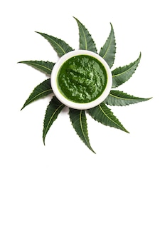 Lecznicze liście neem z pastą w misce na białym tle.