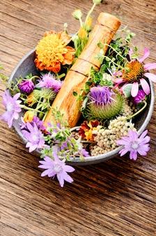 Lecznicze zioła z zaprawą