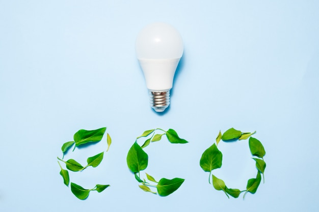 Led lampa z liśćmi na błękitnym tle. koncepcja zielonej efektywności energetycznej.