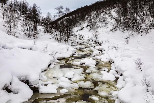 Lejąca się zima rzeka w górach setesdal, norwegia. rzeka jest otoczona drzewami, śniegiem i lodem