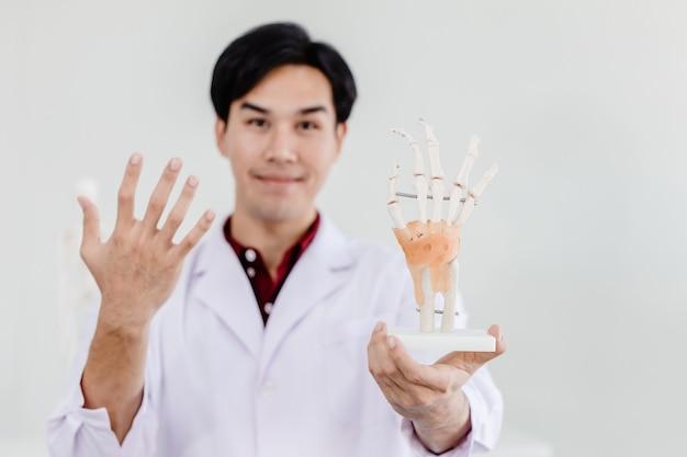 Lekarz fizyczny z modelem dłoni dłoni pokazującym anatomię w więzadłach ścięgien układu mięśniowego dłoni