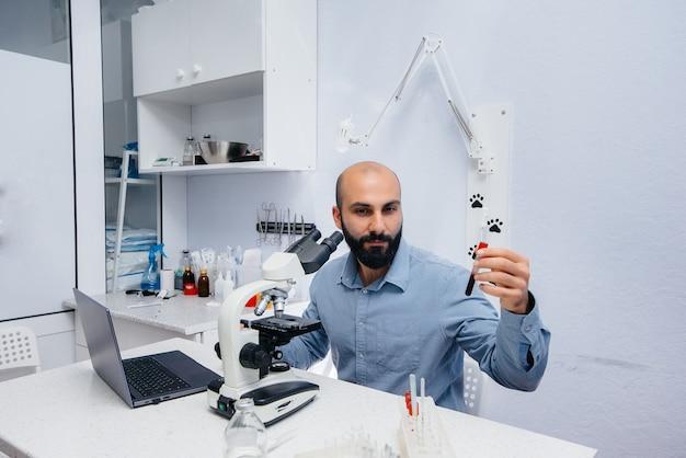 Lekarz płci męskiej w laboratorium bada wirusy i bakterie pod mikroskopem. badanie niebezpiecznych wirusów i bakterii.