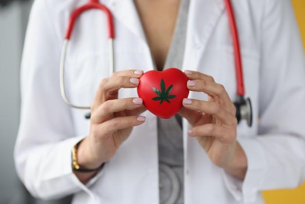 Lekarz trzyma serce ze znakiem marihuany. choroby leczone konceptem marihuany