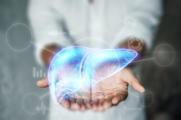 Lekarz trzyma w ramionach hologram wątroby. koncepcja biznesowa leczenia ludzkiego zapalenia wątroby, darowizny, zapobieganie chorobom, diagnostyka online.