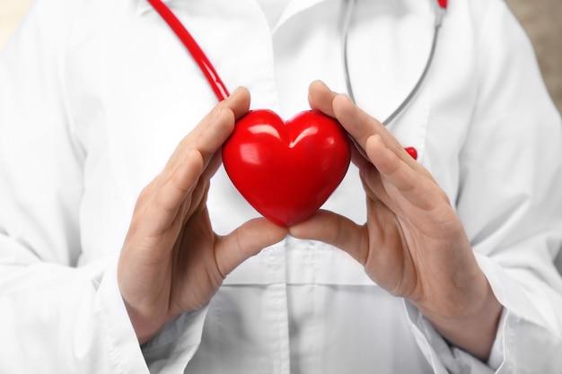 Lekarz trzymający plastikowe serce w dłoniach, zbliżenie