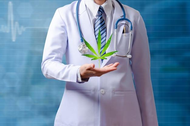 Lekarz trzymający rękę z liściem konopi