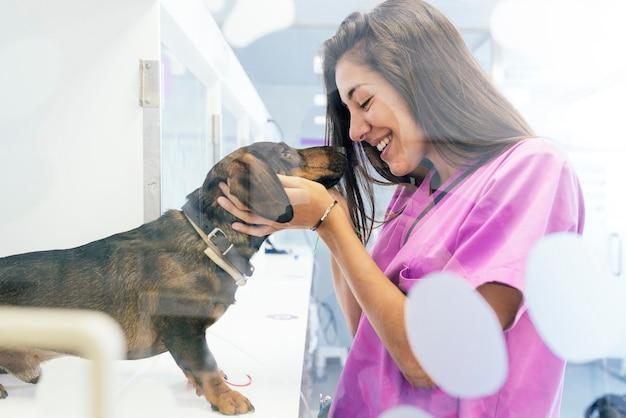 Lekarz weterynarii przytula pięknego psa. koncepcja weterynaryjna.