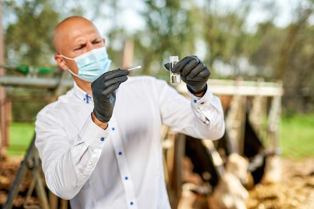Lekarz weterynarii w gospodarstwie bydła w gospodarstwie z krów mlecznych.