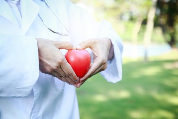 Lekarze trzymają czerwone serce i wykonują dłoń w kształcie serca. tłem jest zielone drzewo.