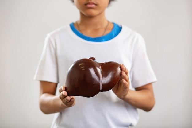 Lekcja anatomii. selektywne skupienie uwagi na ludzkiej wątrobie znajdującej się w rękach miłego, poważnego nastolatka