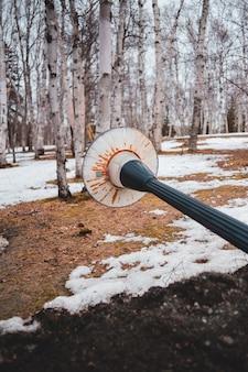 Lekka poczta spadła w pobliżu drzew