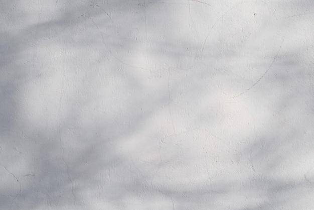 Lekka tekstura ściany z zadrapaniami i cieniem drzewa. tło z miejscem na tekst.