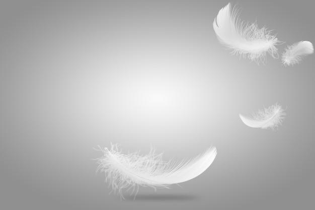 Lekko puszyste, białe pióra opadające w powietrze.