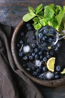Lemoniada jagodowa ze składnikami