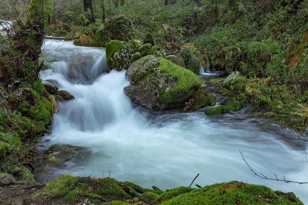 Leśna ścieżka, która biegnie równolegle do rzeki da fraga