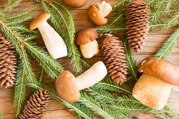 Leśne białe grzyby wśród świerkowych gałęzi i szyszek na drewnianym tle. widok z góry. jesienna kompozycja.