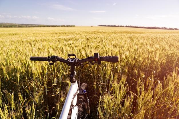 Letni ebike na świeżym powietrzu w polu pszenicy złotej