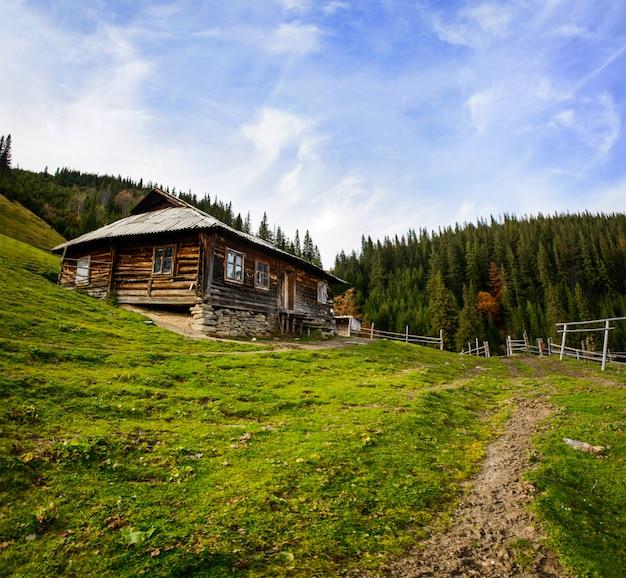 Letni krajobraz. górska osada