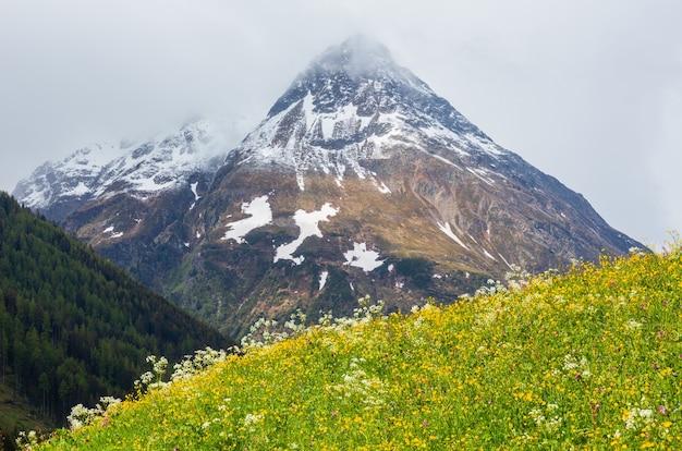 Letni krajobraz górski alp z kwitnącym stokiem (alpy silvretta, austria).