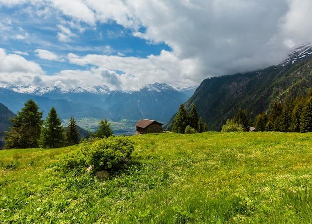 Letni krajobraz górski alpy z żółtymi dzikimi kwiatami na zboczu łąk, szwajcaria.