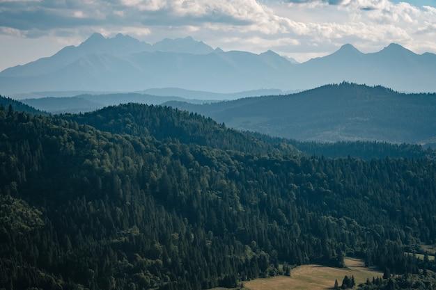 Letni krajobraz górski na słowacji.