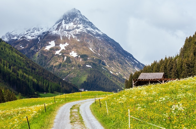 Letni krajobraz górski z kwitnącą stokiem i wiejską drogą (alpy silvretta, austria).