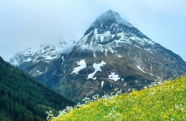 Letni krajobraz górski z kwitnącym stokiem (alpy silvretta, austria).