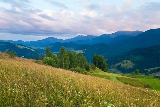 Letni krajobraz górski z kwitnącymi łąkami przed