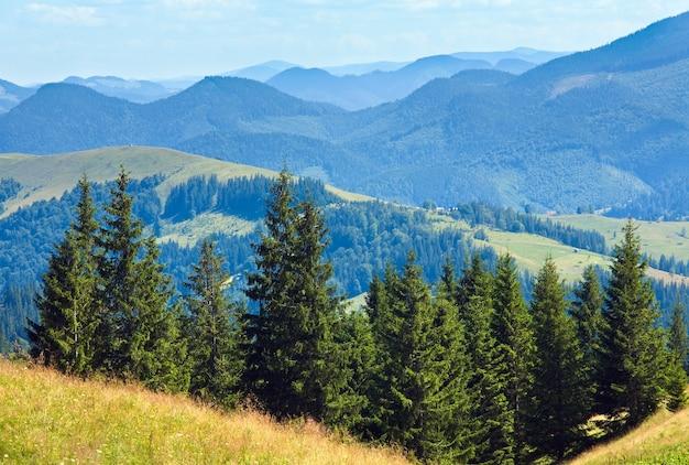 Letni krajobraz górski z kwitnącymi łąkami z przodu