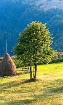 Letni krajobraz górski z stogiem siana i samotnym drzewem