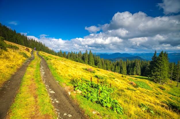 Letni krajobraz górskiej ścieżki