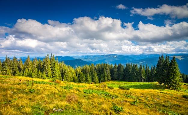 Letni krajobraz karpat.