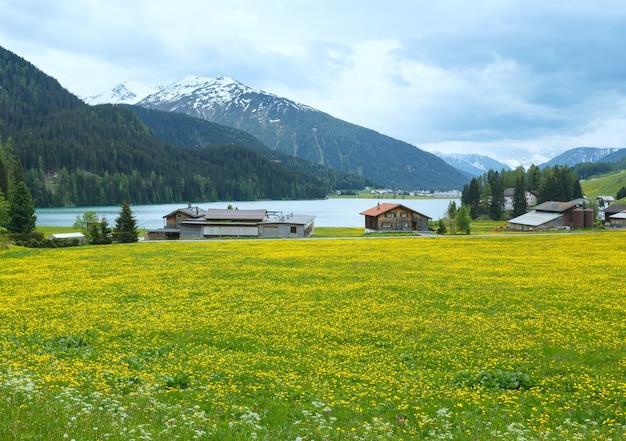 Letni krajobraz kraju z jeziorem davos i łąką mniszka lekarskiego (szwajcaria).