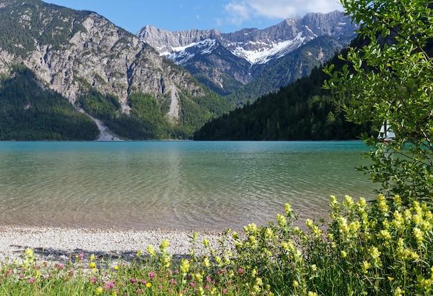 Letni krajobraz plansee ze śniegiem na zboczu góry i kwiatem z przodu (austria)