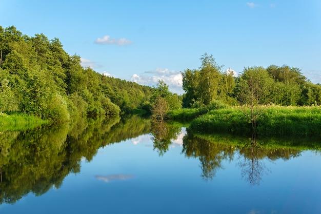 Letni krajobraz spokojnego starorzecza w dolinie zalewowej z zalesionymi brzegami