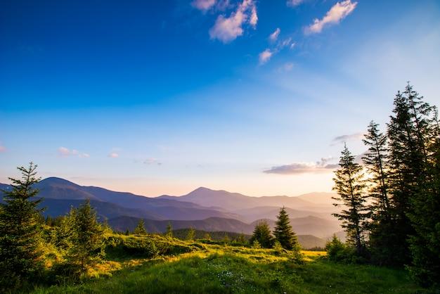 Letni krajobraz w górach