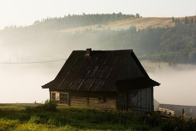 Letni krajobraz w karpatach na ukrainie