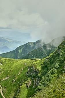 Letni krajobraz w karpatach z zachmurzonym niebem. karpaty, ukraina, europa.
