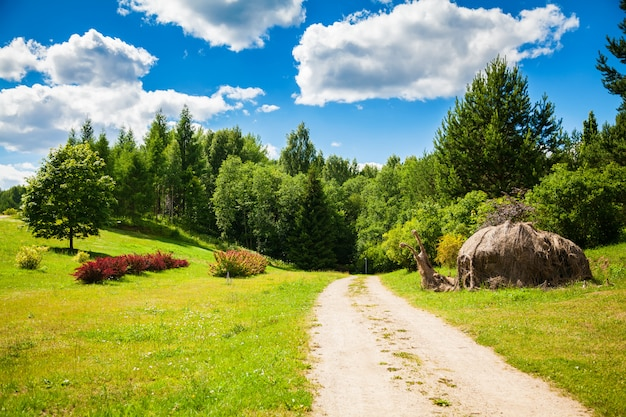 Letni krajobraz w wileńskim ogrodzie botanicznym