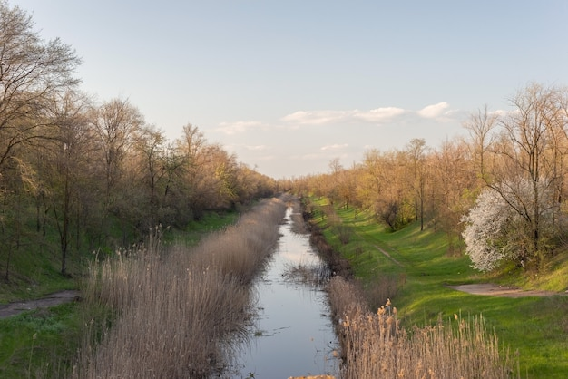Letni krajobraz wąskiej rzeki, z drzewami i trawą, wiejski krajobraz, na tle chmur.