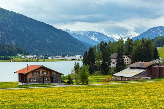 Letni krajobraz wiejski z jeziorem davos, obrzeżami miasta i łąką z mniszka lekarskiego (szwajcaria).