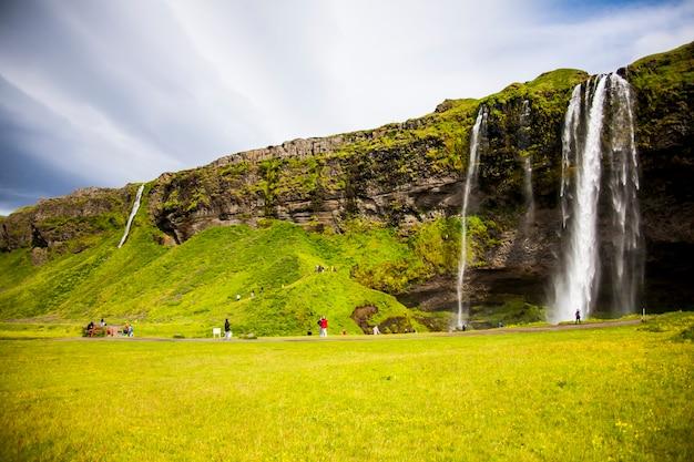 Letni krajobraz wodospadu seljalandsfoss, południowa islandia, europa