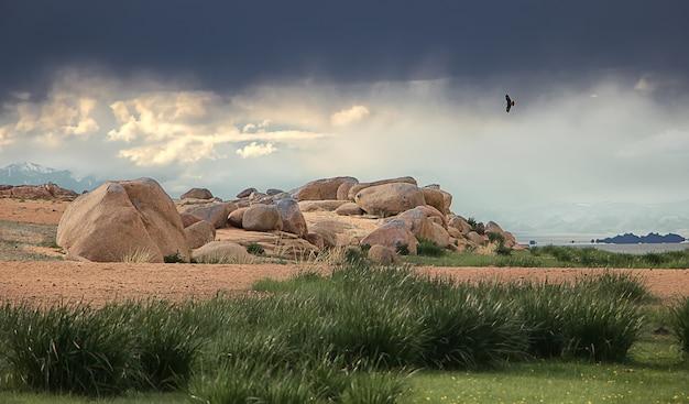 Letni krajobraz z dramatycznymi chmurami i wydmami przed deszczem w mongolii