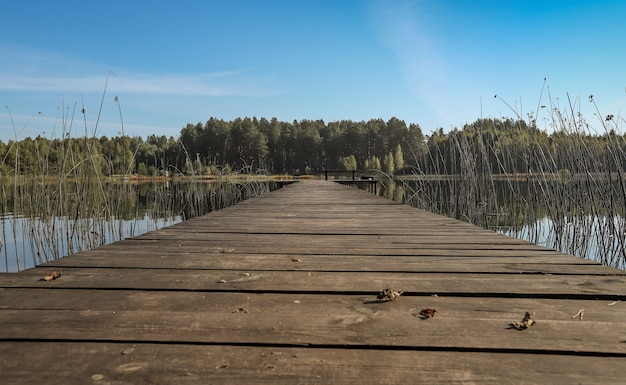 Letni krajobraz z drewnianym długim pomostem lub drewnianym molo w sposób perspektywiczny nad jeziorem lub lasem rzecznym na...
