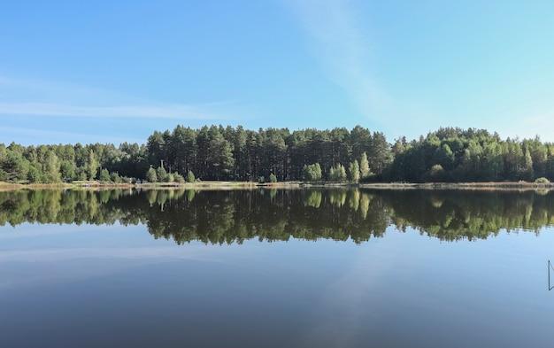 Letni krajobraz z jeziorem, trawa, lasy, błękitne niebo w ciągu dnia