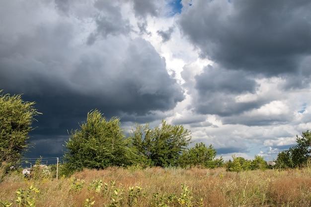 Letni krajobraz z polami i drzewami na dramatycznie zachmurzonym niebieskim niebie